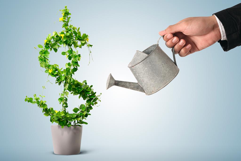 Como virar um investidor?